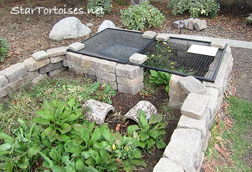tortoise overnight fortress
