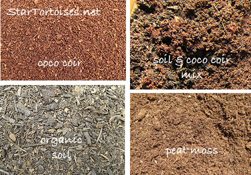 Coco coir vs peat moss autos post for Soil vs coco
