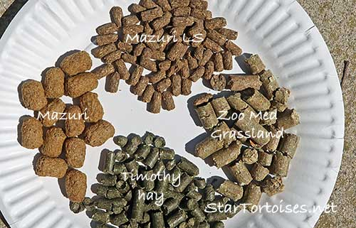 tortoise food pellets