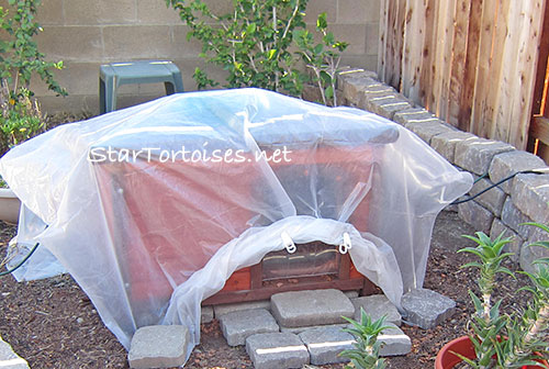 insulated and heated outdoor tortoise house